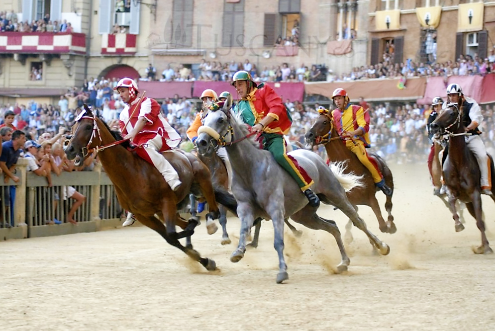 The Palio di Siena, www.patrignone.com