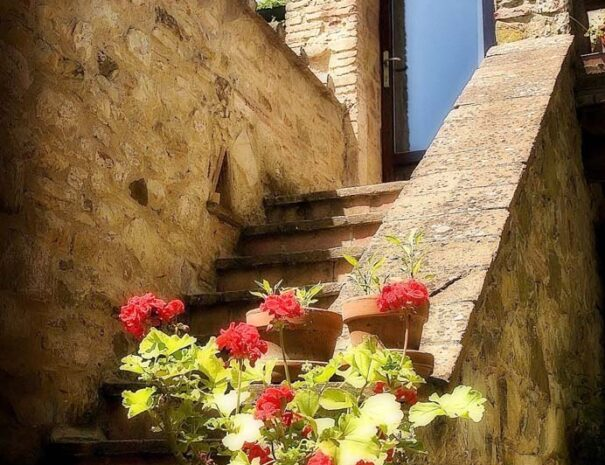 Caminetto steps c1