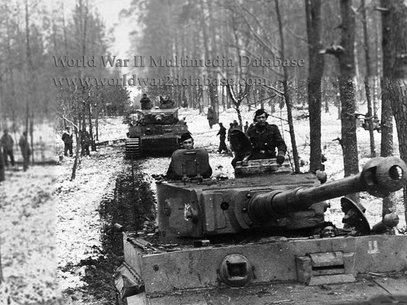 """Panzerkampfwagen VI (Sdkfz 181) Tiger ausf E Turmnummer (Turret Number) S33  leads Tiger S13 as they follow Panzer IVs in a road march by Kampfgruppe (Battle Group) Lammerding, 8.Kompanie, 2nd SS Panzerregiment, 2nd SS Panzer Division """"Das Reich."""" Note the anti-tank rifle hits on the front armor plate and the """"Springender Teufel"""" (Jumping Devil) on the turret side. These tanks were left behind after the bulk of the Division's surviving soldiers were transferred to France on December 17, 1943 to rebuild after constant fighting since Operation Zitadelle (Citadel) in July. Steady attrition reduced Das Reich to just six Panzer IVs, four Panthers, and five Tigers left for Kampgruppe Lammerding. On December 24, the Soviets launched a massive operation that shattered the Ukrainian Front and threatened to cut off German forces. Generaloberst Hans-Valentin Hube (October 29, 1890 - April 21, 1944) successfully extricated his 200,000 soldiers and inflicted heavy losses on the Red Army, but at a high cost in armor. The Soviets could now concentrate on liberating Kharkov. Except for two Tigers evacuated for factory maintenance, all the vehicles were destroyed by April 1944, when the surviving Das Reich men were removed from the Eastern Front to be rebuilt and sent to France."""